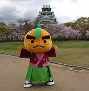 ゆずる大阪城.JPG